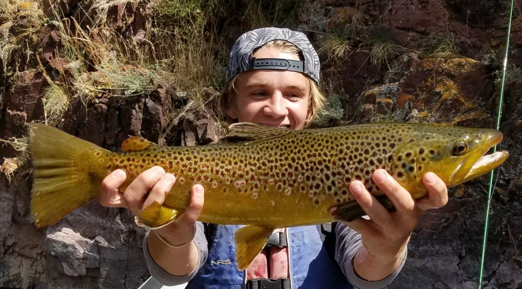 Dry fly fishing the green river dry fly utah for Fly fishing green river utah