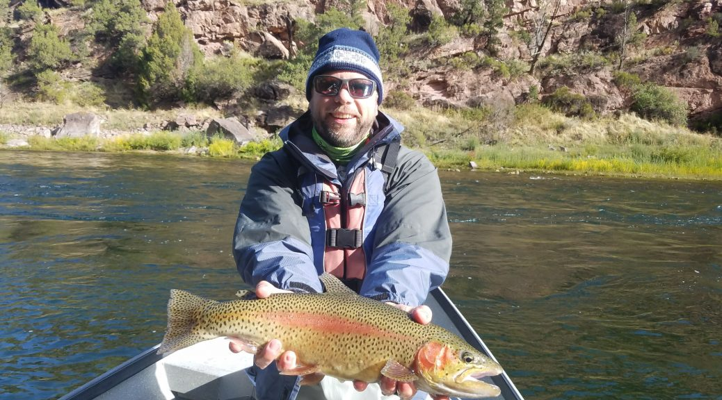 Dry fly utah fly fishing guides for Trout fishing utah